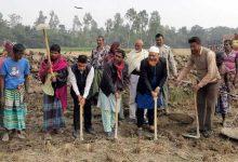বগুড়ার শাজাহানপুরে এমপি বাবলুর কাবিখা প্রকল্প কাজের উদ্বোধন